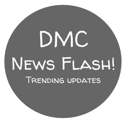 DMC Strategic Budget 2020-2021 (1)